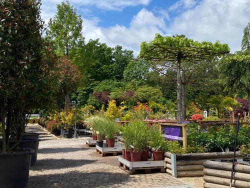 Die Gartenwelt erstrahlt wieder in altem Glanz