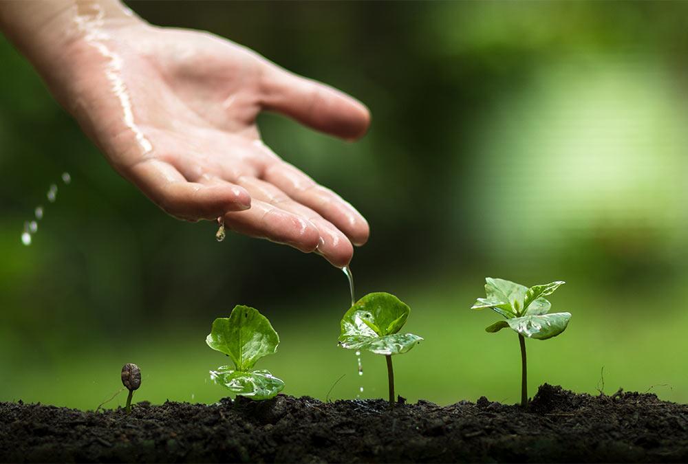 Gartenbewässerung für München und Umgebung