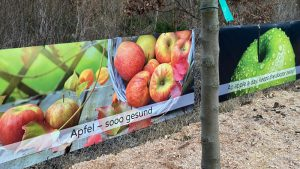 Obstbäume und Beerensträucher für München
