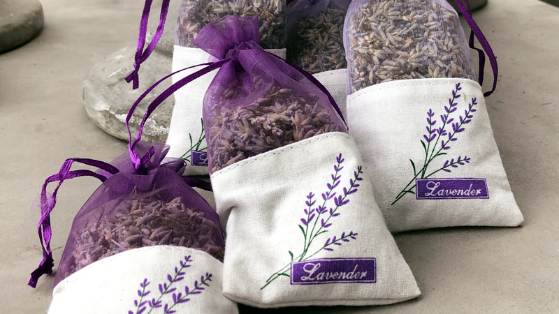 Unser Lavendel bringt Ihnen den Sommer zurück