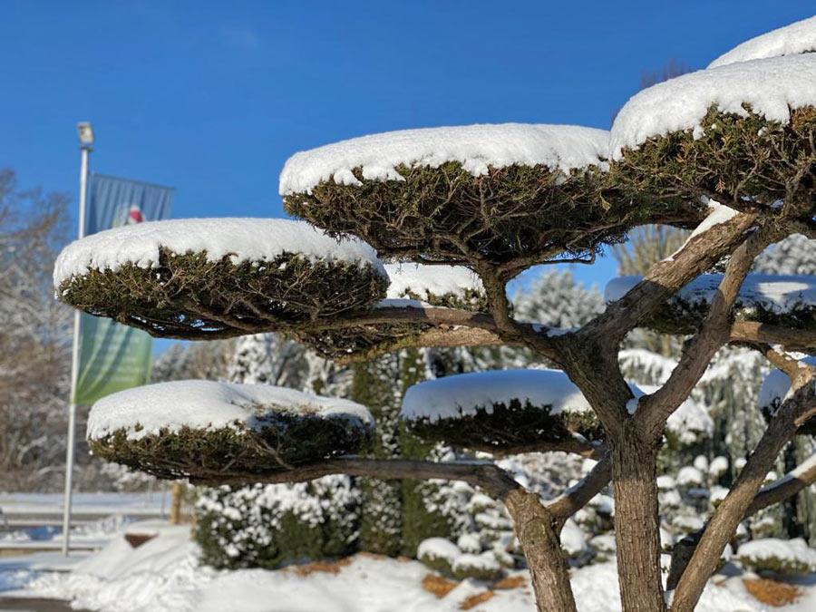 Winter in der GARTENWELT bei München
