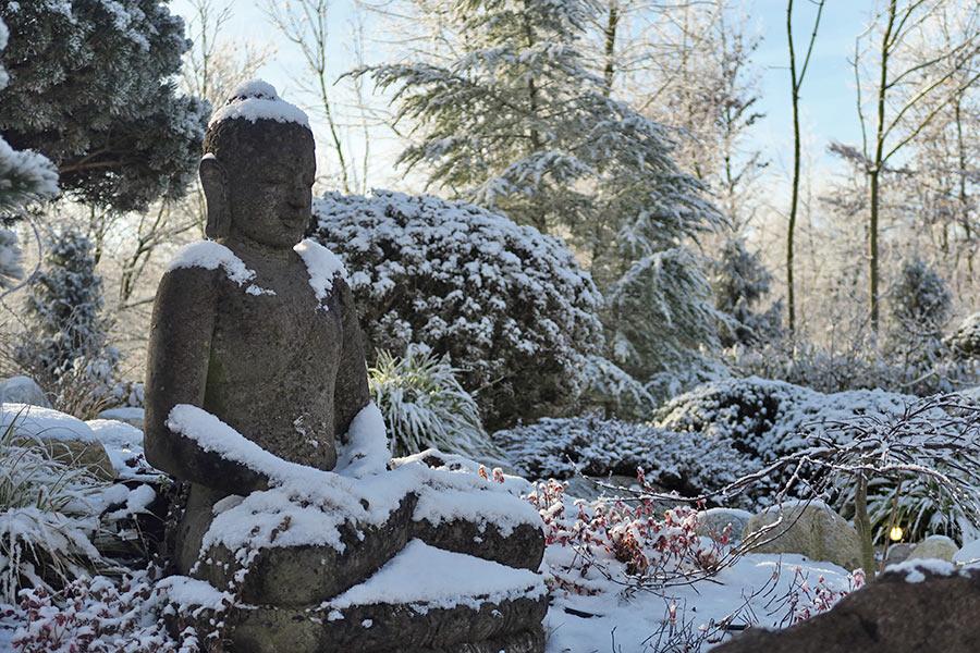 Winter in der Gartenwelt Scheller bei München