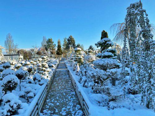 Wintereinbruch in der GARTENWELT
