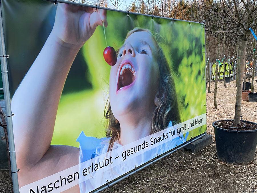 gesundes Naschen mit Obst